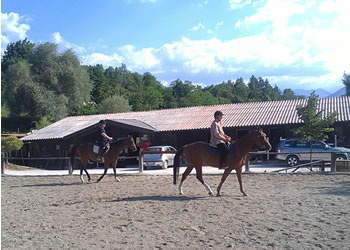 Horse Riding Lessons Marche
